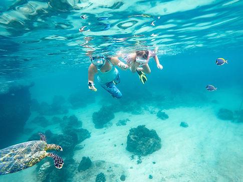snorkeling-grace-bay-beach.jpg