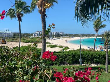 grace-bay-beach-coral-gardens.jpeg