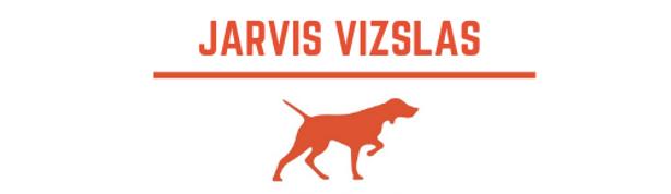 Jarvis Vizslas 1.png