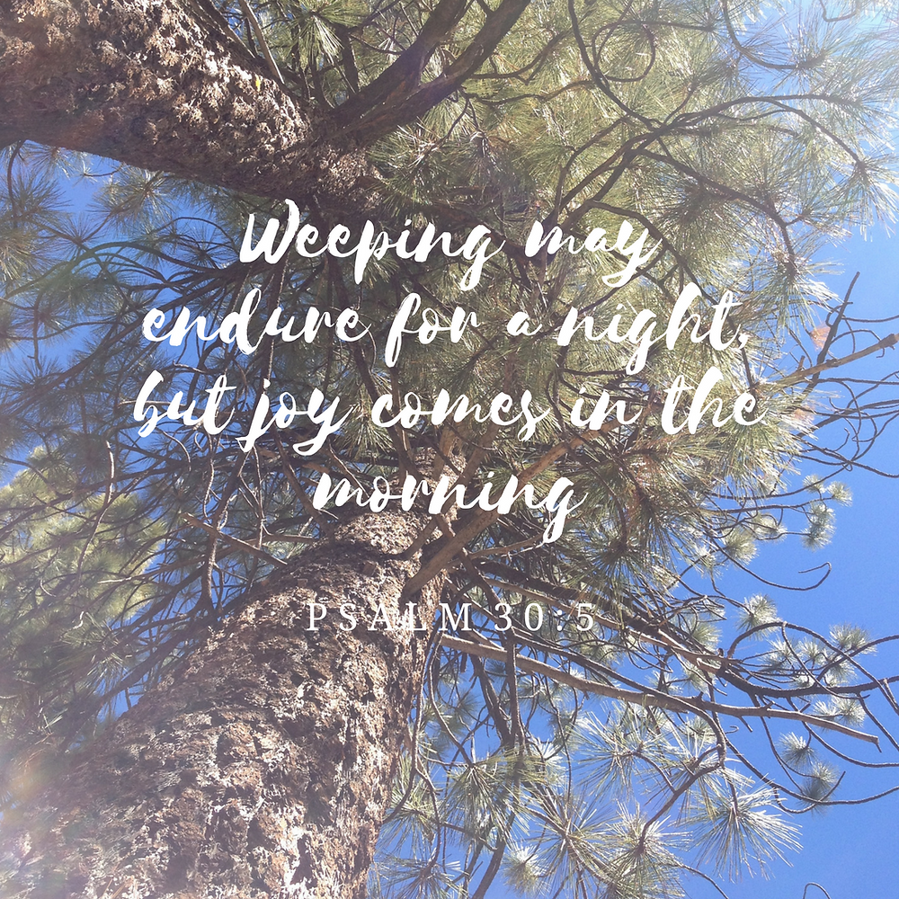 Psalm 30:5 | 10 Bible Verses for the Hurting
