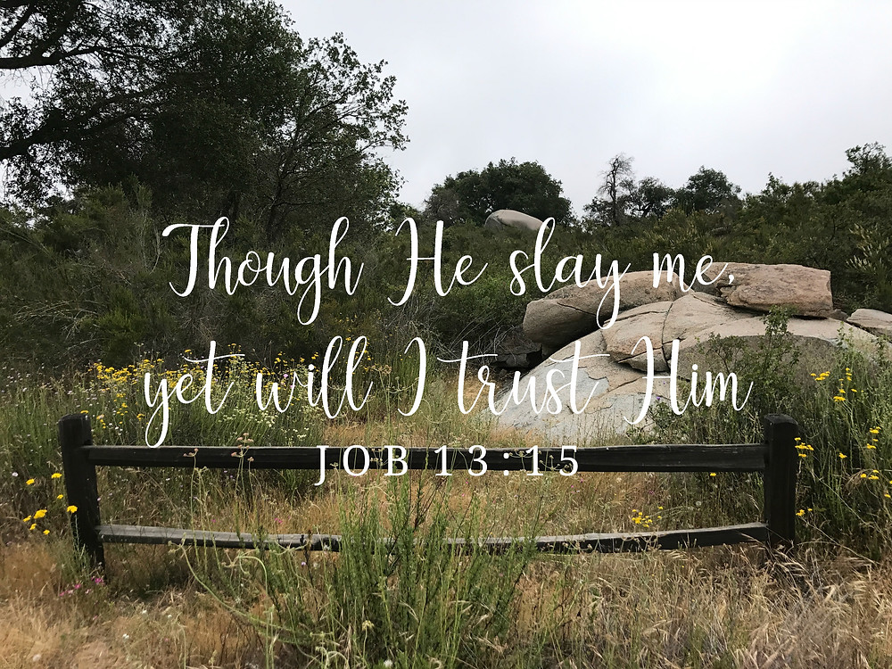 He is all we need