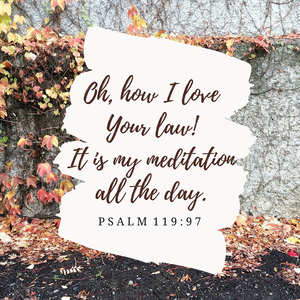 Bailey Cornell | Give thanks | Psalm 119:97