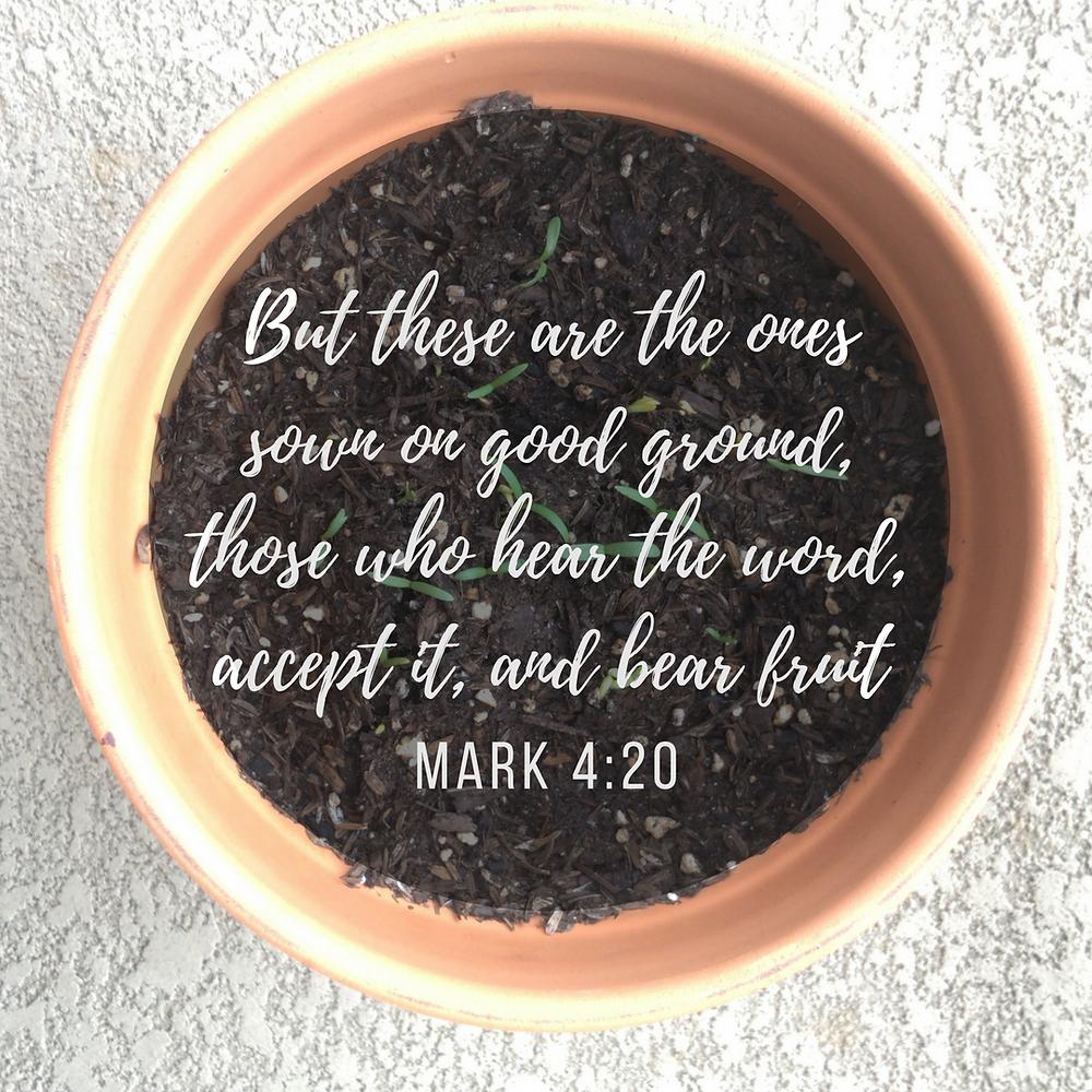 Growth | Mark 4:20