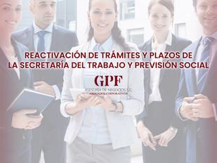 Reactivación de Trámites y Plazos de la Secretaría del Trabajo y Previsión Social