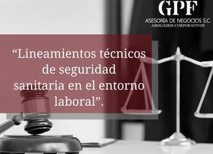 """""""Lineamientos técnicos de seguridad sanitaria en el entorno laboral"""""""