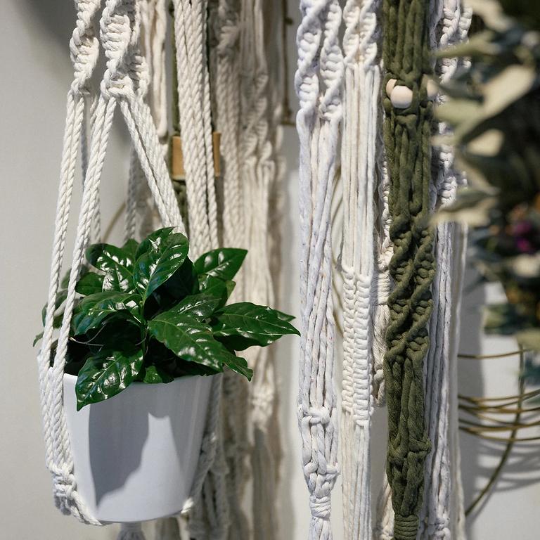 Workshop Macrame Plant Hanger