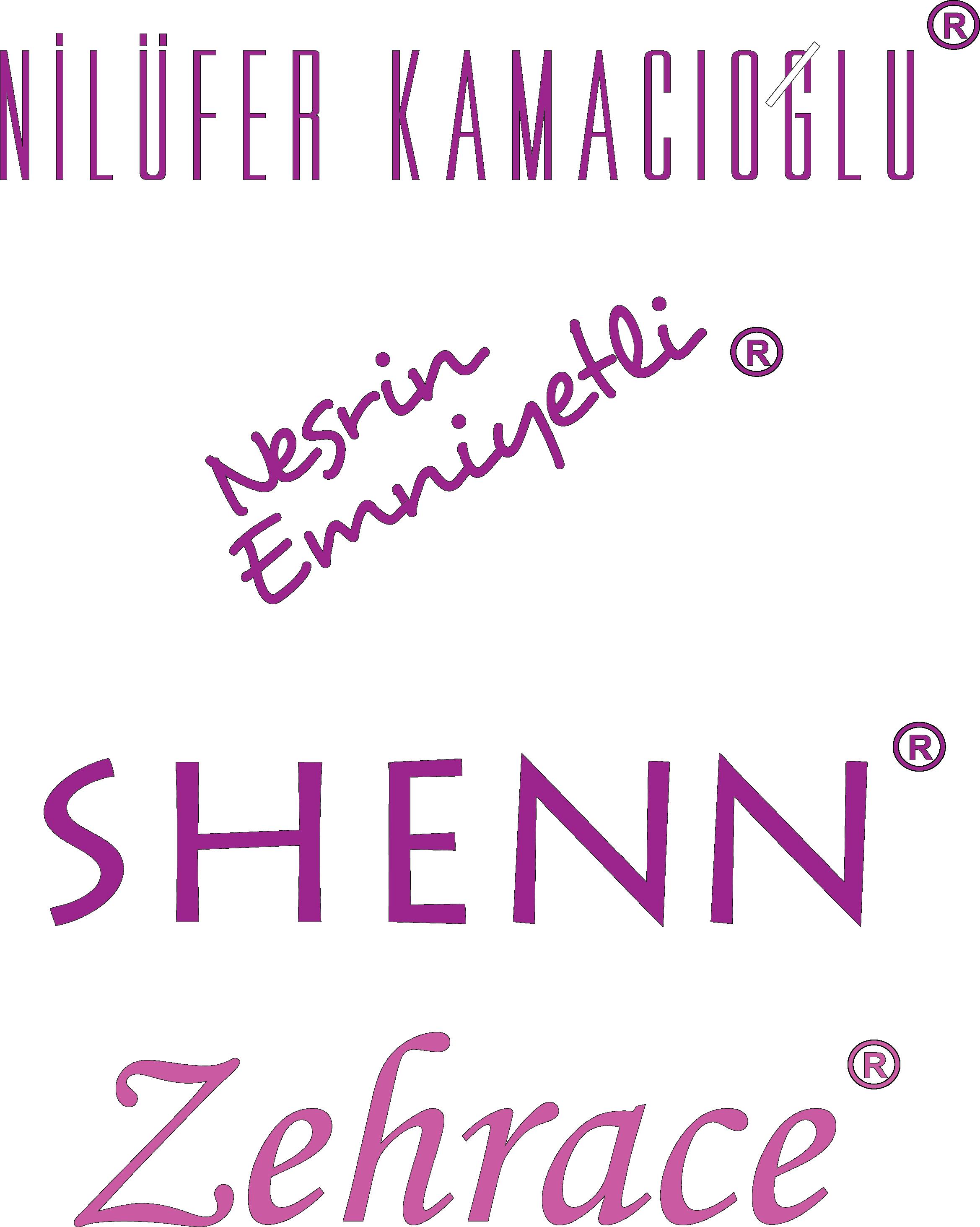 Shenn 2016
