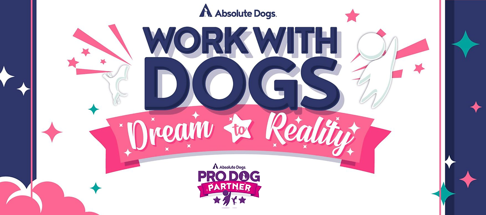 The-absoluteDogs-Work-with-Dogs-14-Day-Challenge-The-absoluteDogs-Work-with-Dogs-14-Day-Ch