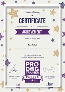 Pro Dog Trainer