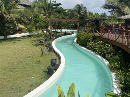 Slide, Swim and dance pool party