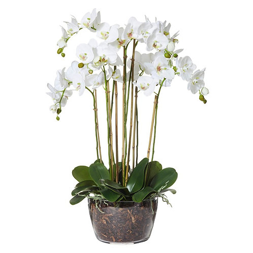 6 Stem Artificial Phalaenopsis Orchid