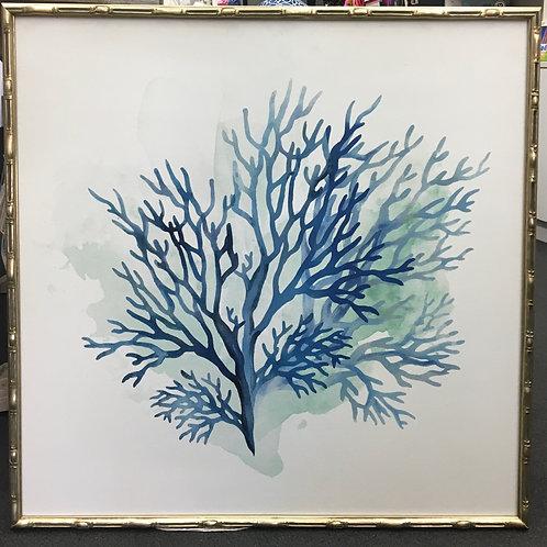'Sealife A' Framed Canvas Print