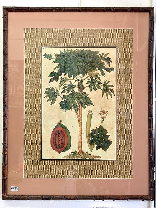 'Palm Sin' Bamboo Framed Print