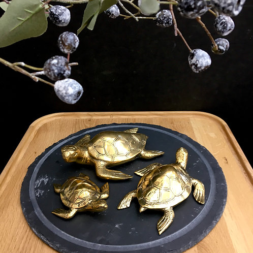Brass Turtles - Assorted Sizes