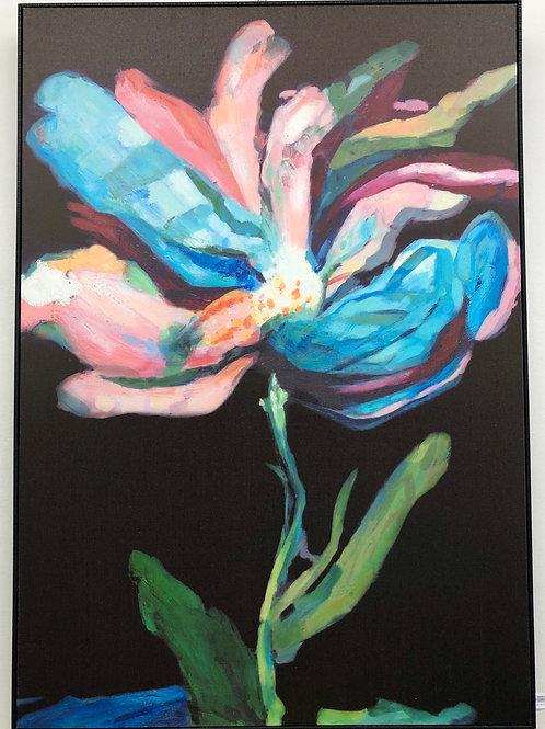 'Blume B'  Print on Canvas