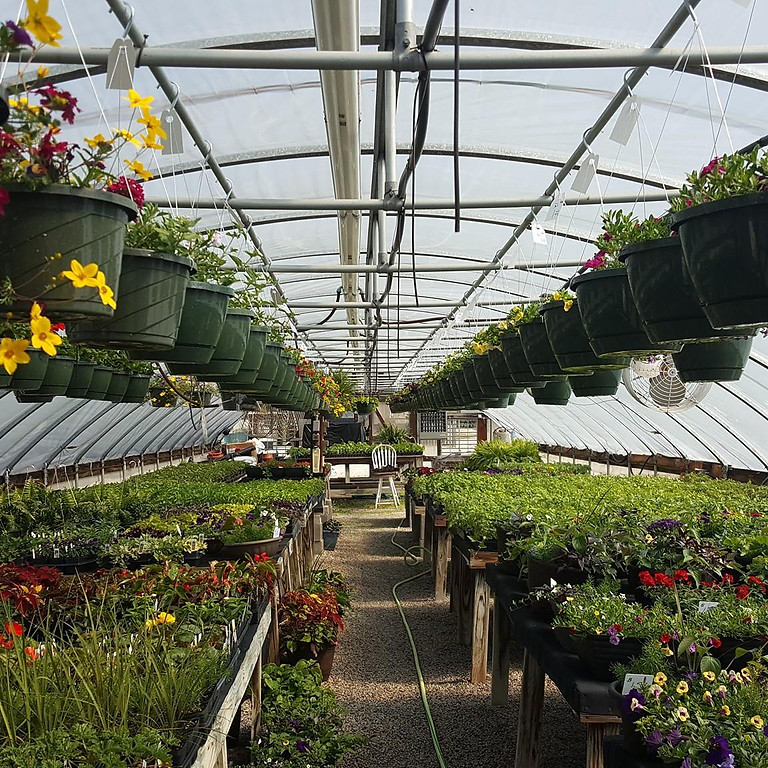 Greenhouse is Open