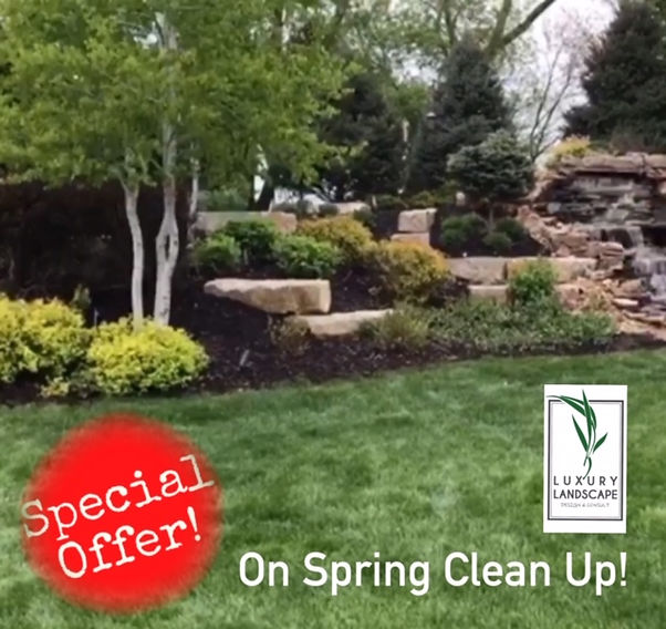 Luxury Landscape Special Offer!