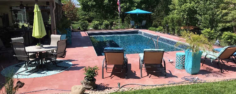 pool.plants.2.jpg