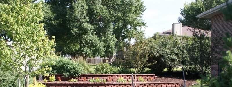 Retaining wall, new trees, borders & mulch!
