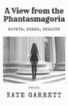 Phantasmagoria Book Cover (2).png