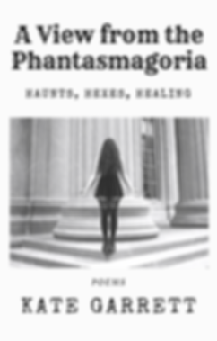 Phantasmagoria Book Cover (2).png