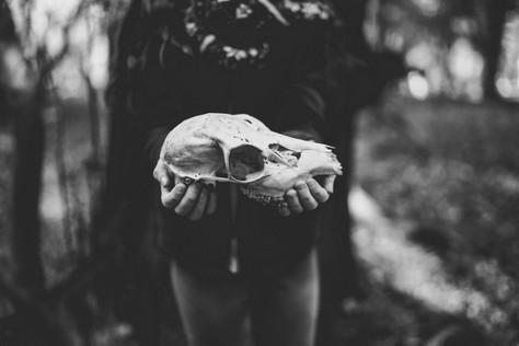 Rhythm of the Bones: DARK MARROW