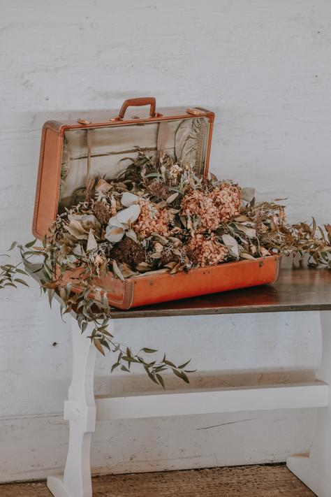Suitcase Full of Broken Dreams