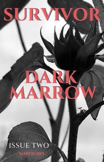 Dark Marrow 2.0 COVER (6).png