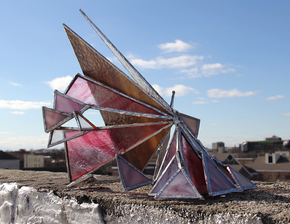 """""""Butterfly Spaceship"""""""