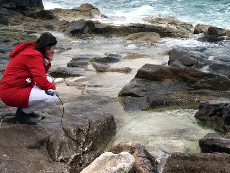 Devastacija morske obale tema elektro-akustičnog koncerta u izvedbi Manje Ristić