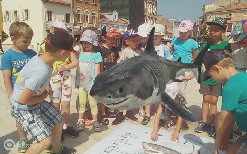 Morski pas na Trgu slobode