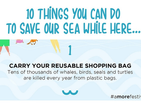 Coming to Croatia? 10 things you can do to save our sea