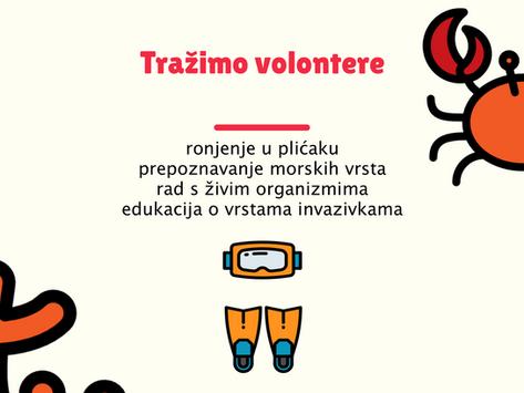 [Poreč] Traže se volonteri/ke za Morsku mini školicu