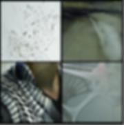 Screen Shot 2020-01-15 at 10.04.15 PM.pn