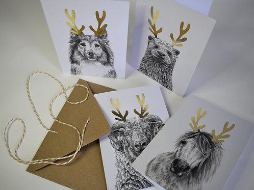 Shetland Mammal Christmas Cards