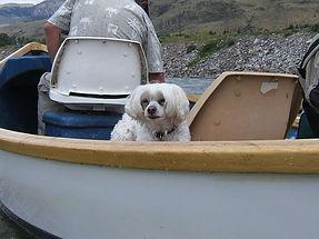 Pookie in Boat.jpg