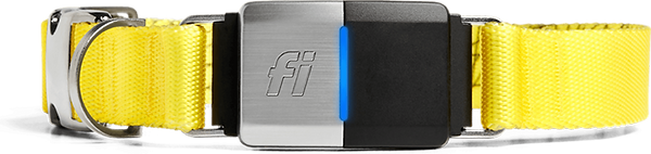 Fi Collar Image - For Website.png