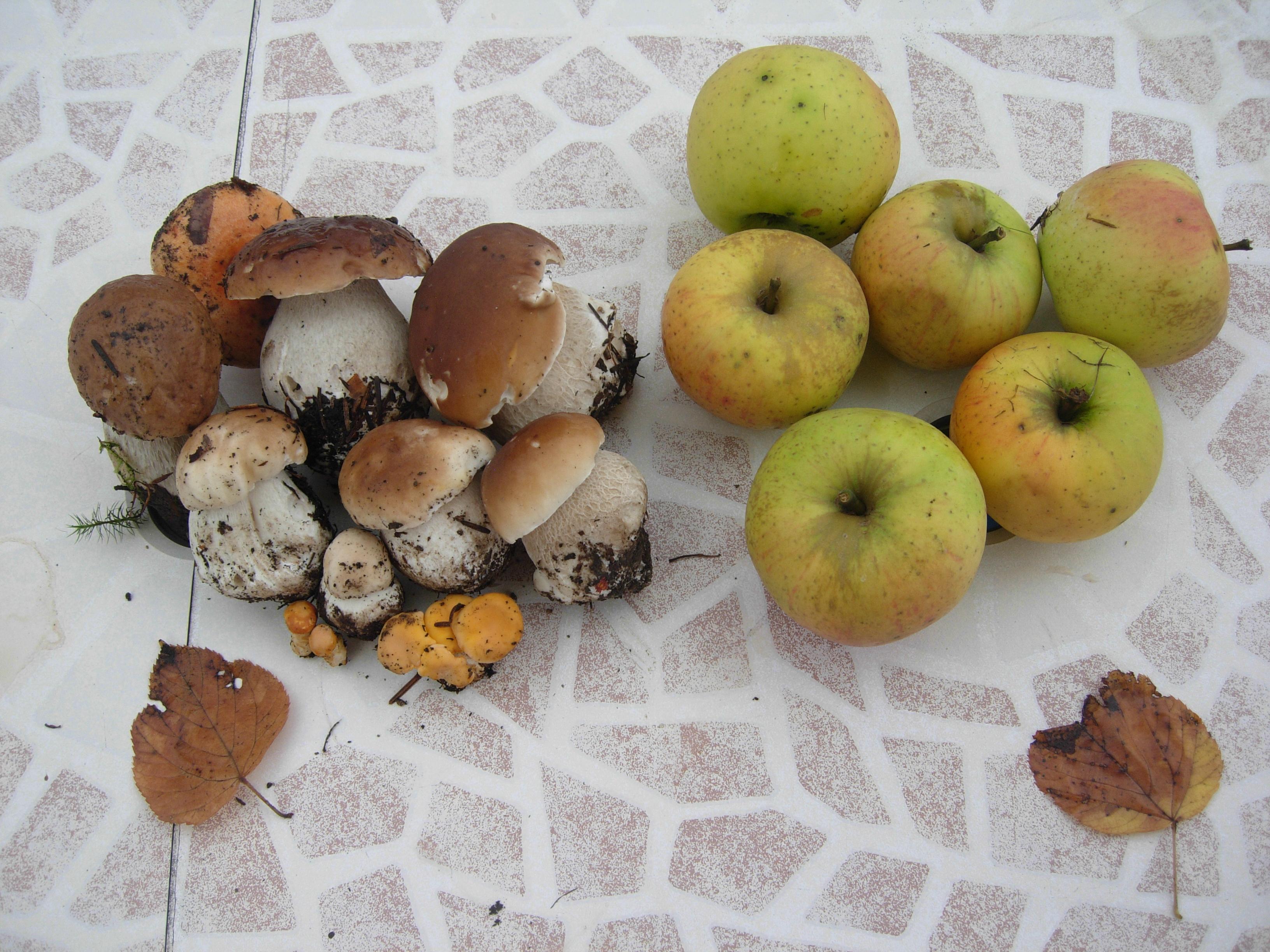 les fruits du jardin!!!
