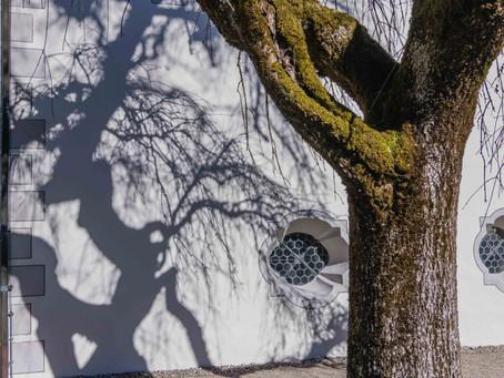 Schattengespenst