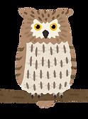 bird_shima_fukurou.png