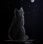 illustration chat par l'illustratrice Michèle Pincemin
