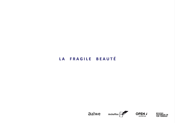 fragile beauty.png