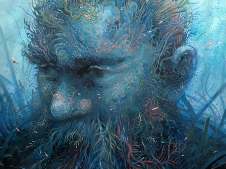 🦋 Les géants des Récifs 🦋
