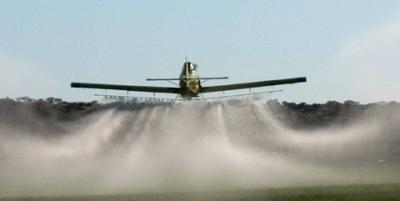 An Air Tractor 401B, seen from the back, spraying wheat in the Northern Cape, Douglas district.