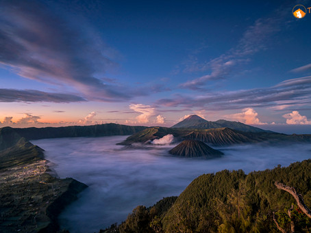 Bromo - Kawah Ijen : Indonesia (Survey Trip)