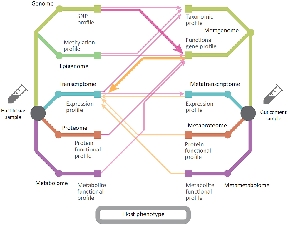 Interactions between omics expression data at different molecular levels for both host and genome