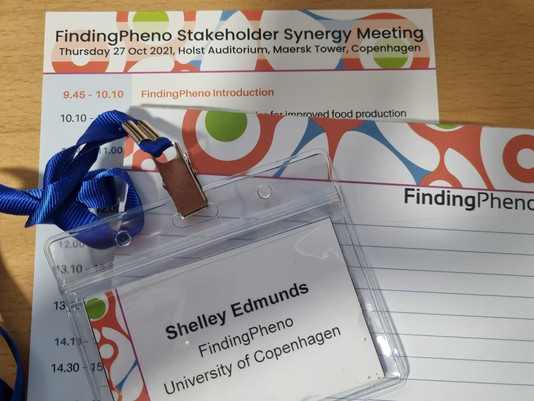 Stakeholder Synergy Meeting