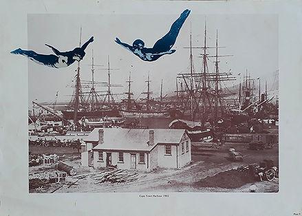 CapeTownHarbour_S.jpg