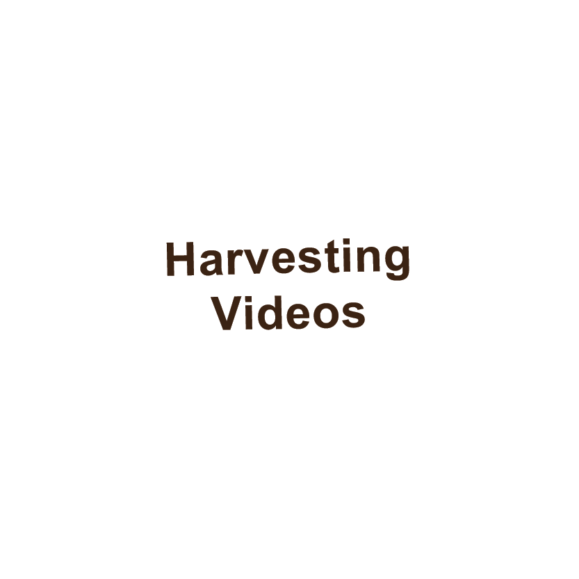 pic harvesting videos.png