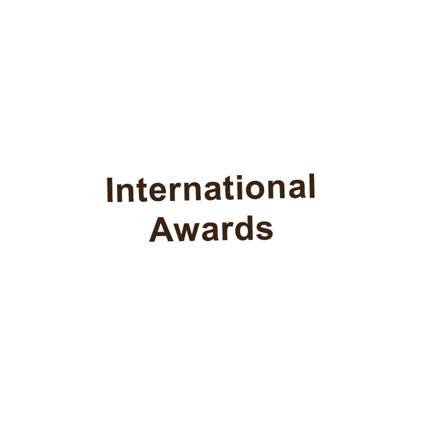 pic intl awards.png